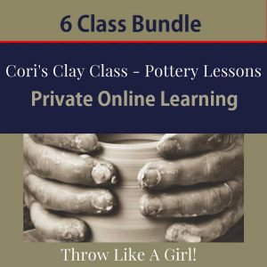 online learning bundle of 6 classes
